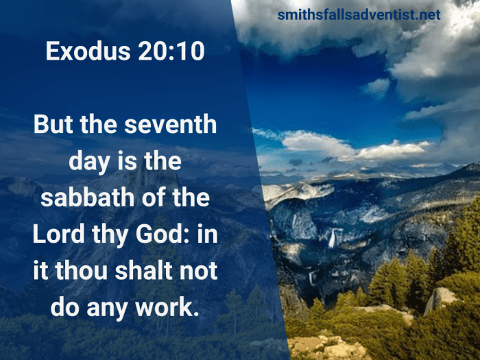 Illustration-landscape-evergreen forest below mountain tops-title-The seventh day is the sabbath of the Lord in Exodus 20 verse 10-text-Bible verse