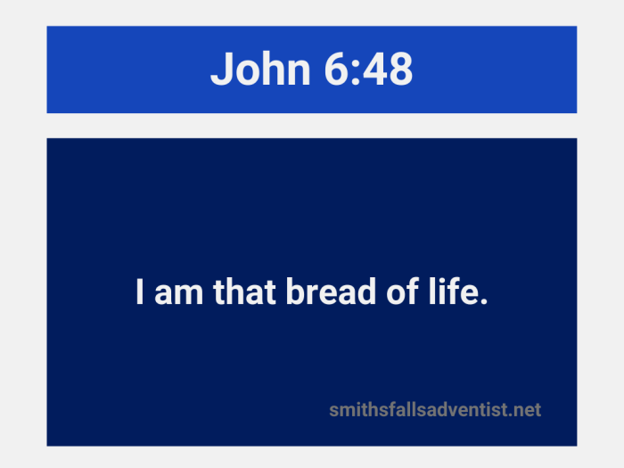 Illustration-blue and gray background-title-I am the bread of life in John 6 verse 48-Bible text
