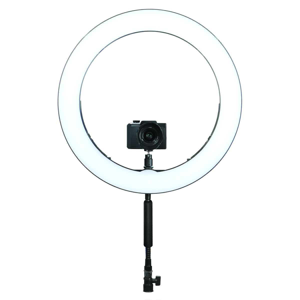 19″ LED Bi-Color Ring Light