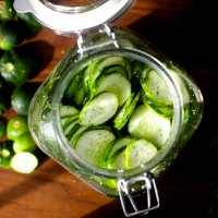 easiest fridge dill pickles