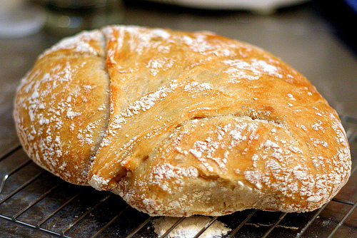 No Knead Bread Smitten Kitchen
