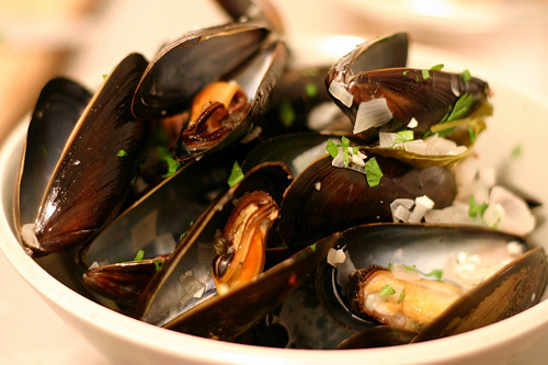 flexing-my-food-neuroses-and-also-mussels