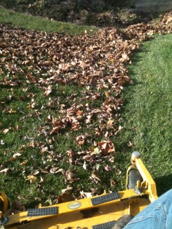 Fall leaf clean up made easy with the Walker bagging system