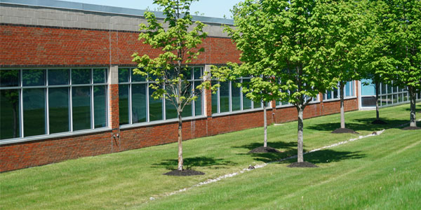 commercial landscaping property with newly planted trees located in lancaster pa