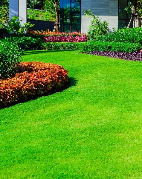 lancaster county lawn treated by sm lawn care