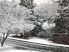 Zile calde urmate de o RĂCIRE BRUSCĂ ŞI NINSORI. PROGNOZA 18 NOIEMBRIE – 1 DECEMBRIE