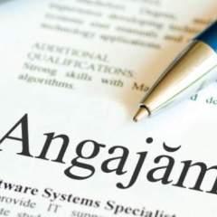 Lista locurilor de munca vacante  la AJOFM Satu Mare