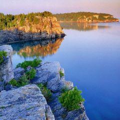 Apa din mai multe lacuri a devenit gelatinoasă. Care este explicaţia