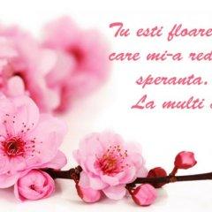 Mesaje de Florii. Cele mai frumoase mesaje, felicitări şi urări de Florii 2017. LA MULŢI ANI
