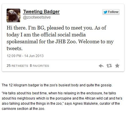 The tweeting badger from the Johannesburg Zoo.