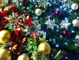 クリスマスクイズ 保育園幼稚園の子ども向け簡単なマルバツクイズ集