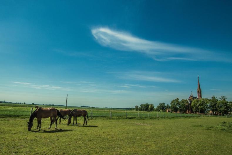 Smogorzów - krajobraz