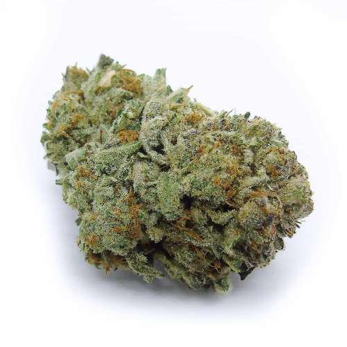 Purple Kush Cannabis Strain - London Ontario