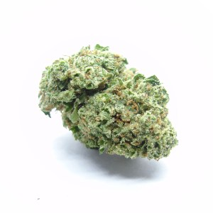 Mataro Blue Cannabis Strain - Weed Delivery London Ontario