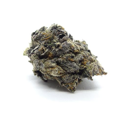 Black Gas Cannabis Strain - Weed Delivery London