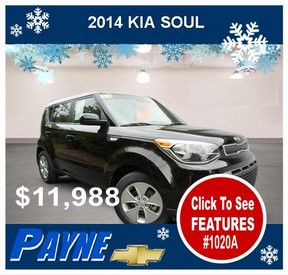 Payne 2014 Kia soul winter 1020a 288
