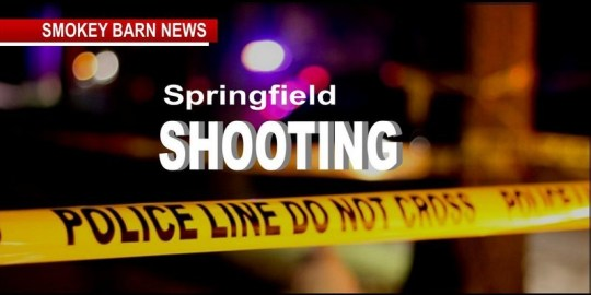 Drive by shooting in springfield