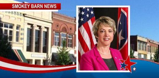 Ann Schneider For Springfield Mayor
