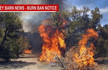 Dry Conditions Spark Burn Permit Season to Start Early