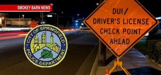Springfield Police To Increase DUI Enforcement Over The Holidays