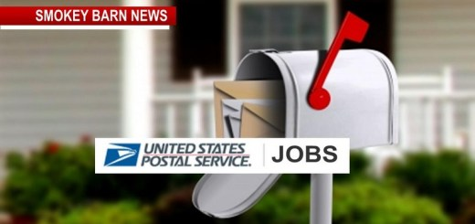 Work For The Post Office Part Time (5 Day Window To Apply)