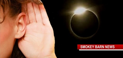 Eclipse: We Want to Hear From You
