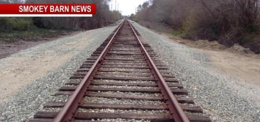 Pedestrian Dies Following Train Accident In Cedar Hill