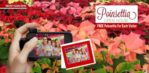 South Central Growers Presents 2018 Poinsettia Open House