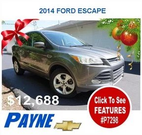 Payne 2014 Ford Escape P7298