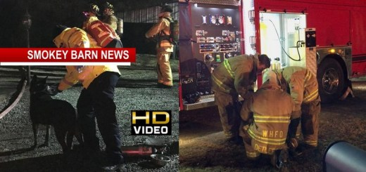 White House Home/Dog Saved From Fire