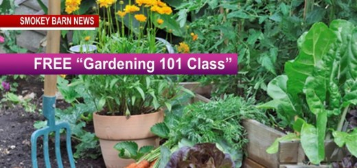 "FREE ""Gardening 101 Class"" April 21 - Register Today!"