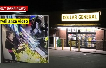 Woman Robs Springfield Dollar General At Gunpoint