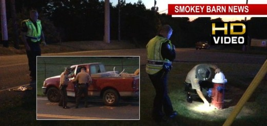 "Pedestrian Struck By Vehicle In Springfield ""Critical"""