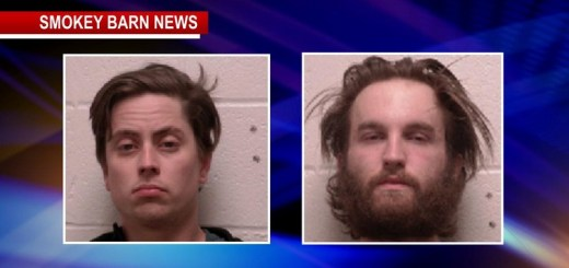 Suspects Wanted For Trailer & Vehicle Thefts Captured