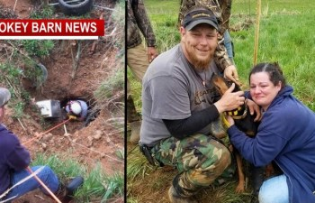 Beloved Hound Dog Stuck In Sink Hole, Rescued After 19 Hours
