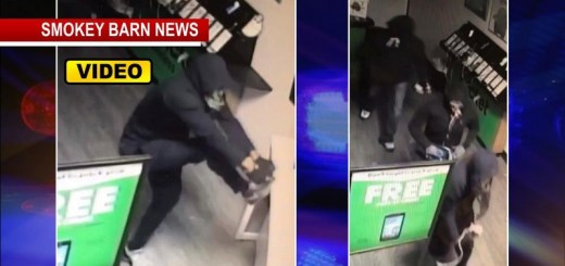 Violent Grab-N-Dash Burglary Caught On Camera In Springfield