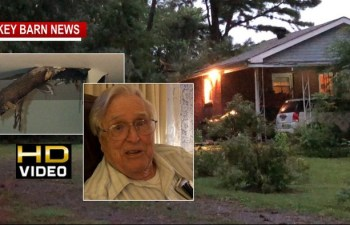 Neighbors Leap Into Action After Tree Crashes Onto Couple's Home