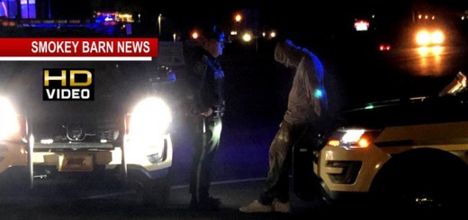 Traffic Stop Turns Into Police Pursuit Near Springfield