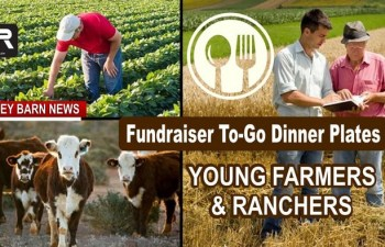 To-Go Ribeye Or BBQ Chicken Plates To Support Young Farmers & Ranchers Scholarships