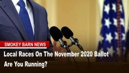 Seats On The November 2020 Ballot - Are You Running?
