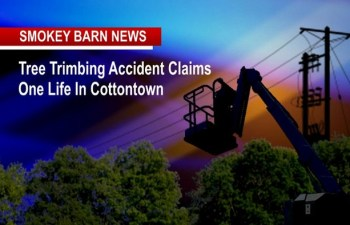Tree Trimming Accident Claims One Life In Cottontown