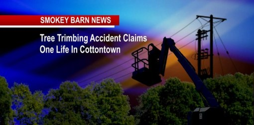 Tree cutting accident claims a life in Cottontown
