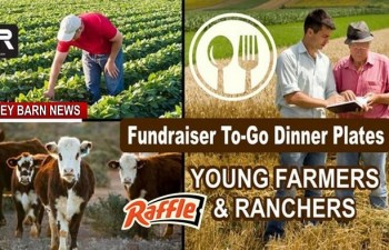 Chili Dinner/Raffle To Support Young Farmers & Ranchers Scholarships