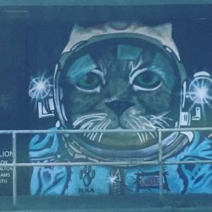 Astrocat in Nanaimo