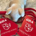 GBA Badges for certified judges