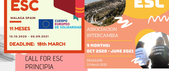 Volunteering vacancies in Spain
