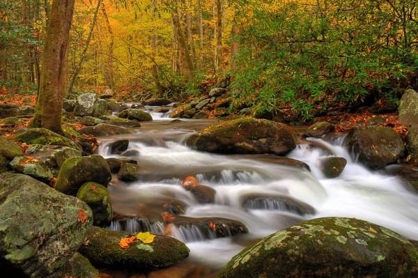 Smoky Mountain Landscape Portfolio Eric Gebhart
