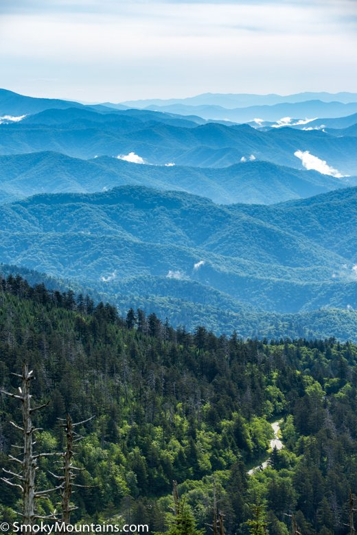 Clingmans Dome  Unbiased Review of Hike  Scenic Drive