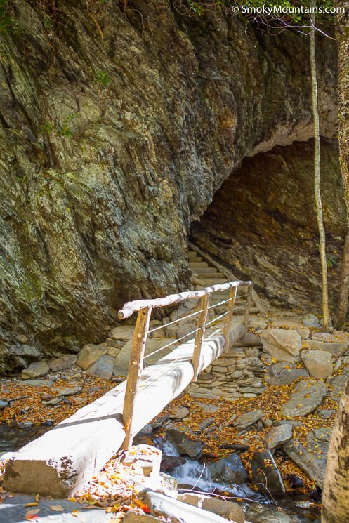 Alum Cave Trail Review  Guide with Insider Tips
