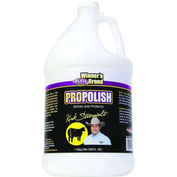 693101- ProPolish, Gallon